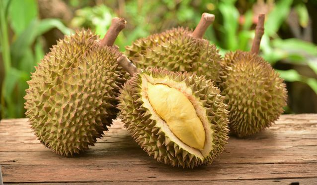 durian fruit de thailande