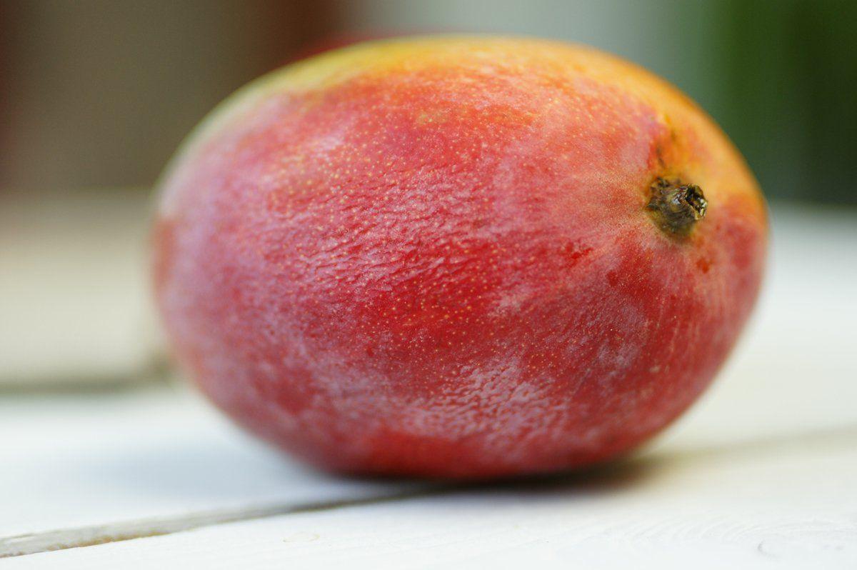 mangue-entiere_web